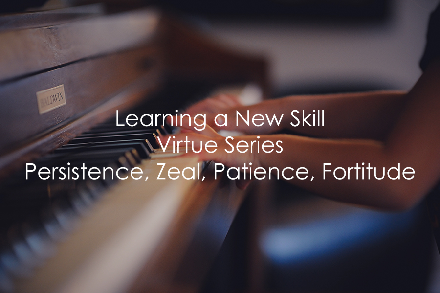 Learning a New Skill   Virtue Series   Persistence, Zeal, Patience, Fortitude